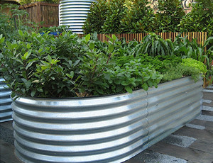 Raised Steel Garden Beds With Plants